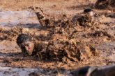 man-mud
